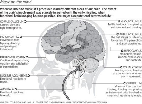 brain-and-music
