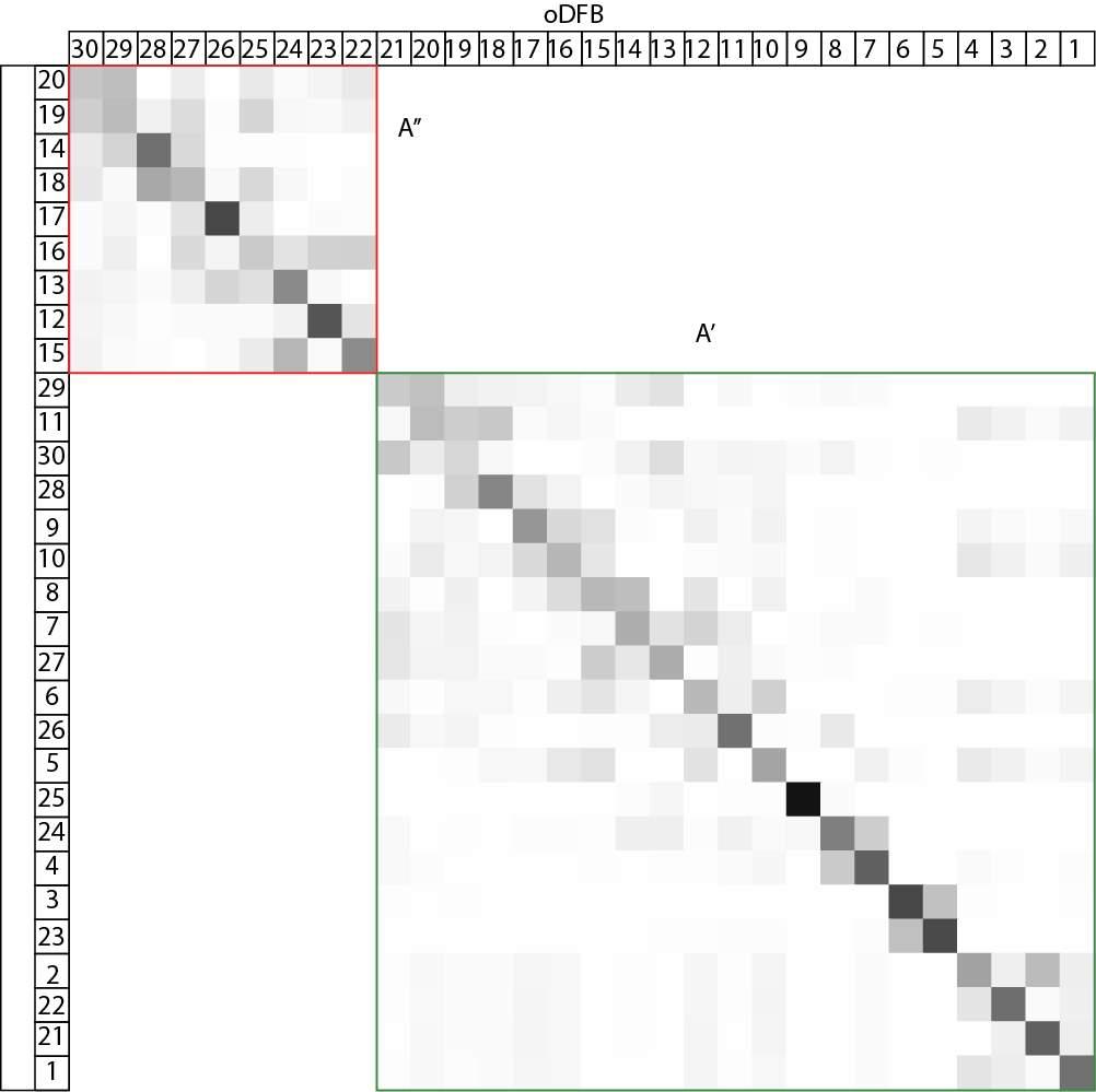 C:UsersDavidAppDataLocalMicrosoftWindowsINetCacheContent.WordpDFB(l)-oDFB(t).png