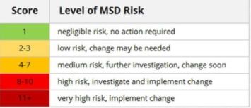 Level of MSD Risk