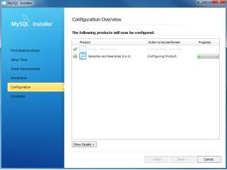 Install MySQL Step 8.2 - Configuration Overview