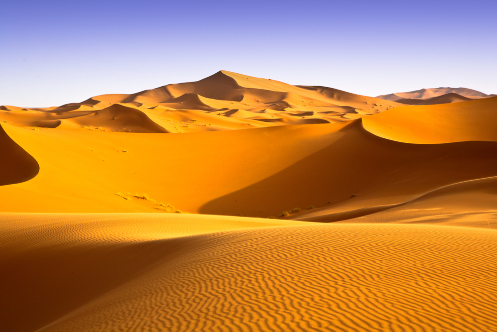 Image result for desert