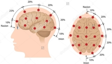 Image result for eeg sensor placement
