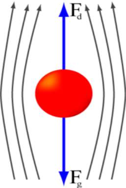 An object moving through a gas or liquid experiences a force in direction opposite to its motion. Terminal velocity is achieved when the drag force is equal in magnitude but opposite in direction to the force propelling the object.