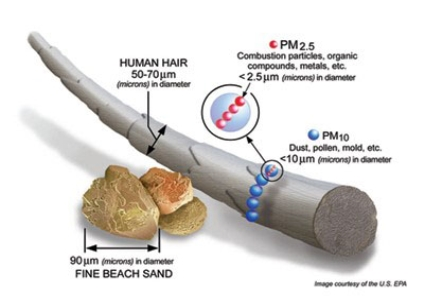 PM graphic showing size compared to hair and grain of sand