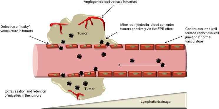 """EPR tumor""的图片搜索结果"