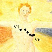 V1 to V6