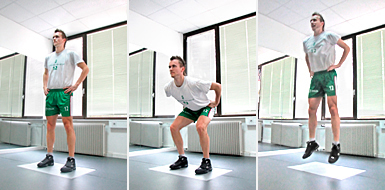http://wise-coach.com/images/pictures/measurements/pic-repetitive-counter-movement-jump.jpg