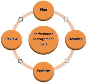 Image result for Explain the performance management cycle