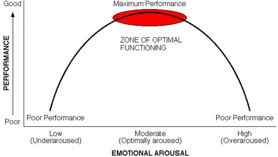 Image result for individual zones of optimal functioning