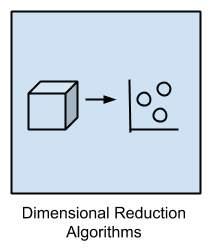 imensional Reduction Algorithms