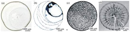 Image result for nanoparticles coffee stain patterns