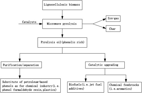Image result for Production of phenol from lignocellulosic biomass by catalytic microwave pyrolysis