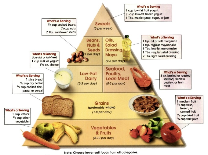 Image result for dash diet food pyramid