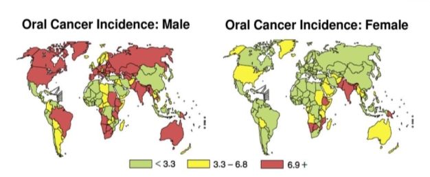 Image result for survival rate oral cancer worldwide