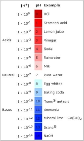 Image result for ph scale log
