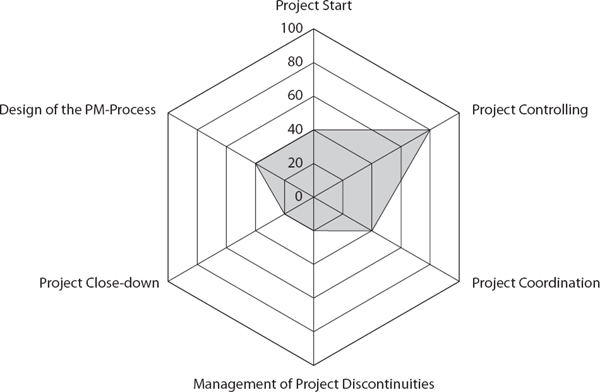 Spider Web Presentation of the Organizational Project Management Competence