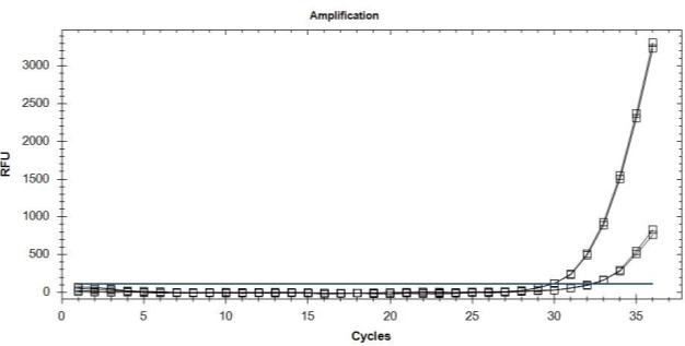 C:ArticleSingle detection of the resistant allele.jpg