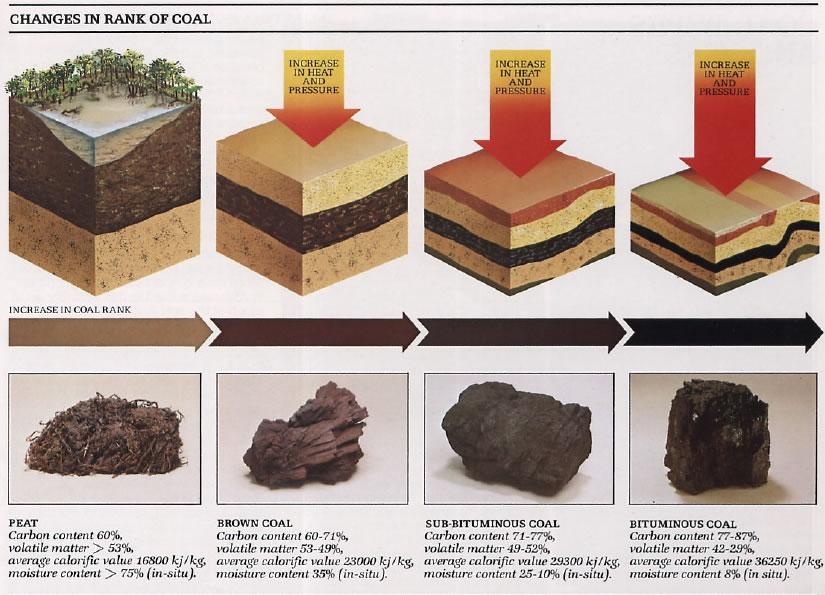 http://eis.uow.edu.au/outburst/images/Coal%20Rank.jpg